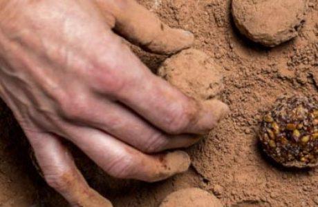כדורי שוקולד שכיף להכין עם ילדים